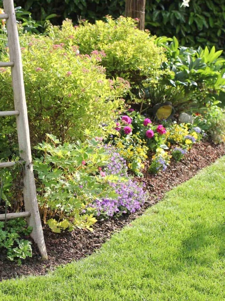 Ambiance Ecopaysages Saint-Maximin Brignoles Aix-en-Provence Paysagiste Jardinier Espaces Verts Jardins jardin fleurs pelouse