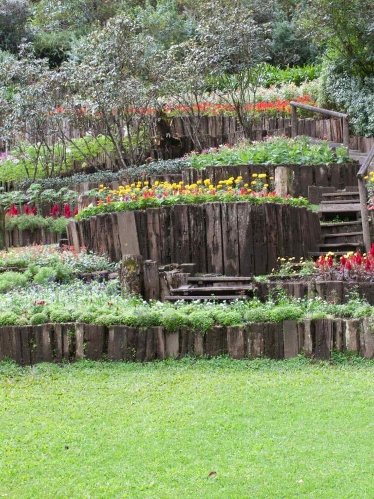 Ambiance Ecopaysages Saint-Maximin Brignoles Aix-en-Provence Paysagiste Jardinier Espaces Verts Jardins création paysagère parc fleurs et bois